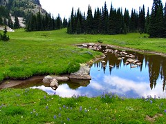 Palisades Lake trail, end of July 2007