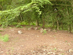 DSC03535 (narcheska) Tags: wood bridge fairy pooh 100 mound acre