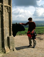 Friends (Kumukulanui) Tags: bull nationaltrust glastonburytor somersetlevels stmichaelstower isleofavalon ultimateshot