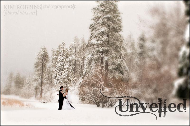 snow unveiled1
