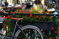 Amsterdam (Elios.k) Tags: bridge flowers red house travelling water amsterdam bicycle horizontal outdoors boat canal focus dof bokeh nederland thenetherlands nopeople getty kanaal channel fiets backgroundblur subgetty