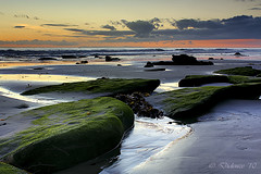What Lies Beneath (Didenze) Tags: longexposure sunset seascape reflection texture clouds twilight rocks glow dusk explore pacificocean lowtide tidalpools canonrebelxsi exposurefusion didenze