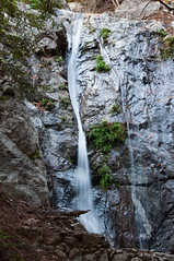 Pfeiffer Falls Photo