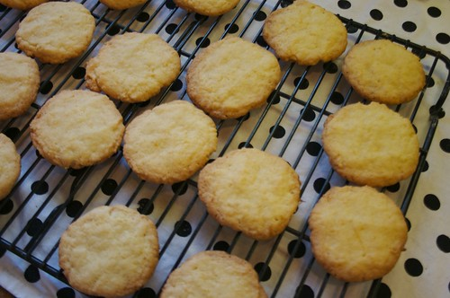 lemon cookies from the oven