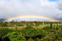 Maui Wowie!