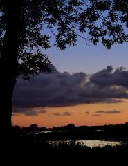 Silhouettes (Kirsten M Lentoft) Tags: sunset sky cloud lake silhouette denmark soe blueribbonwinner abigfave arresø anawesomeshot colorphotoaward momse2600 searchandreward kirstenmlentoft