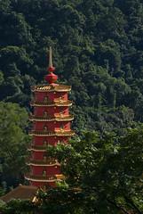 La torre del monasterio