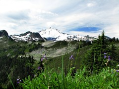 Mt Baker with Lake Ann and flowers in the foreground