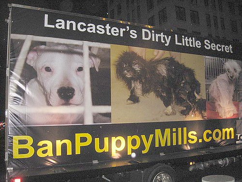 Pa puppy mill protest sign