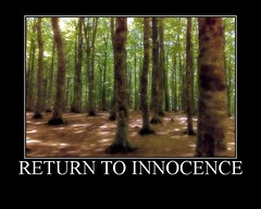 Return to Innocence (Oceano Mare) Tags: forest lights shadows vivid ombre enigma luci gaussianblur foresta thebigone returntoinnocence oceanomare flickrsbest ortonized thegoldenmermaid