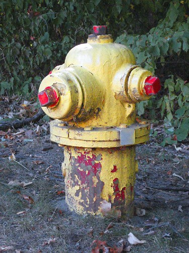 Yellow Fire Hydrant\Red Nipples