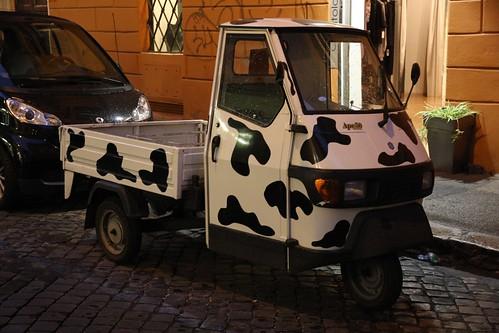 Roma, Italy - 76
