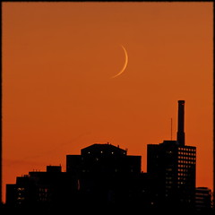 Good night, moon (Now and Here) Tags: sunset orange moon toronto ontario canada lune canon buildings eos mond twilight horizon luna crescent lua dslr crescentmoon gloaming creciente mondsichel waxingcrescentmoon 40d croissantdelune flickraward canon40d platinumheartaward canonefs55250mmf456is bestofmywinners flickraward5 totallyunrelatedtothatgoodnightmoonchildrensbook acrossthedonvalley