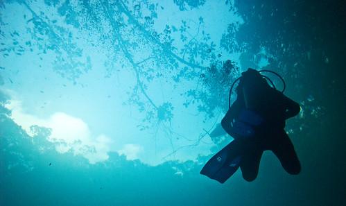 Cenote Angelita 08