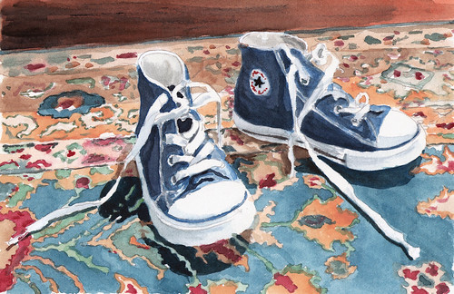 Study of Fin's Sneakers For Learning To Fly