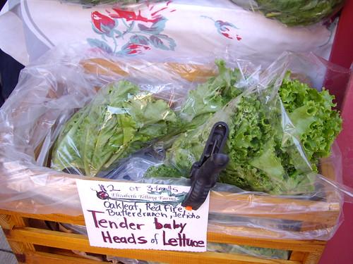 lettuce061607
