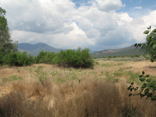 Taos Mountain In Summer, July 2007, Taos, New Mexico, photo © 2007 by QuoinMonkey. All rights reserved.