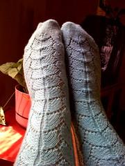 My Fabulous Socks