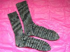 Pomatomus socks!