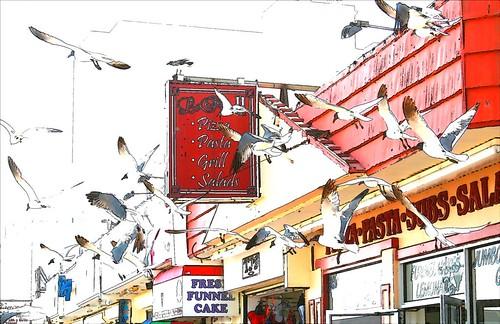 1133783945 713154c668 Digital Photo of the Day | cartoon birds
