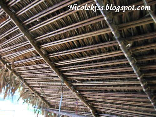 rooftop of orang asli hut