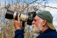 The Bird Whisperer: Explored (Boreal Photography) Tags: birds wildlife chickadee boreal