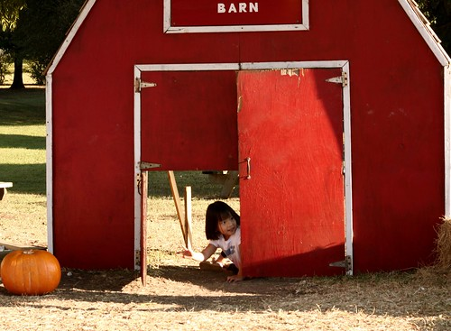 e in the barn