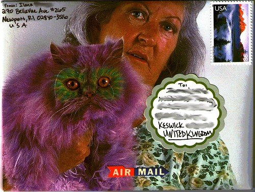 Purple cat envelope