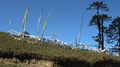 Bhutan-1778