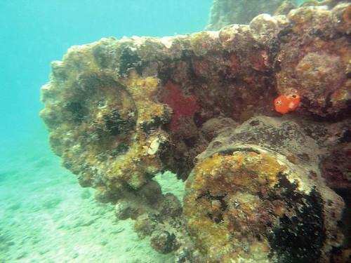 Tank track Rabaul PNG
