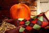 Pumpkin n Plaid (TXAlleKat) Tags: d50 50mm nikon sp 50mmf18d kneehighsocks fallharvest 365days clemjustwantsthesocksoffandtorollinthehay blacksocksandsandalsarehot thetrialrockseveryonessocks orlayinthegrass