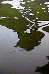 20100618-tedx-oil-spill-1798
