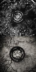 Crumble (Logan Detty Photography) Tags: white black tree sepia silver lens nikon ground stump pro nik cracked boken lightroom d90 efex logandettyphoto logandettyphotography