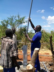 Inserting the cylinder into the well
