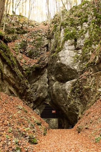 Entrance Krizna Jama