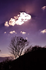 coast (xiaoran.bzh) Tags: trip travel sun france nature sunshine landscape nikon brittany scenery europe bretagne breizh brest 旅游 paysage 风景 tamron f28 尼康 大自然 欧洲 a16 法国 d90 阳光 布列塔尼 1750mm tamron1750f28 tamronspaf1750mmf28xrdiiildasphericalif 腾龙 nikond90 布雷斯特