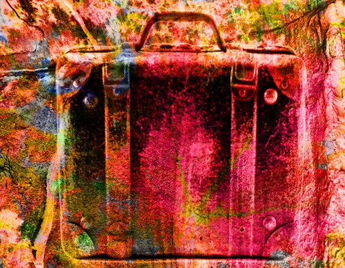 suitcase_autmn