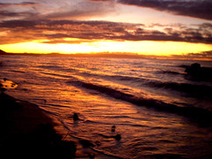 P6110332 (charlie_curilan) Tags: beach philippines bohol panglao