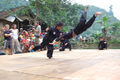 Demo of Pencak Silat