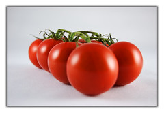 Tomatoes (Andrea&Mike@Flickr) Tags: light red rot photoshop licht tomatos tomaten superaplus aplusphoto