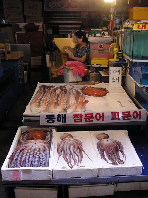 Kraken on sale at Noryanjin Fish Market, Seoul, South Korea