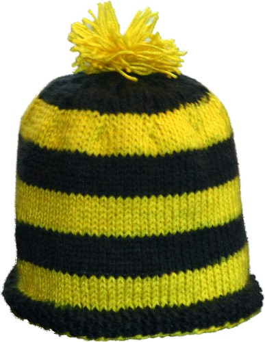 Michigan Hat