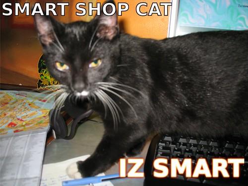 SMART SHOP CAT