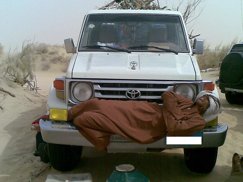 النوم سلطان >> كما يقولون 3353583702_47c6135e6a.jpg