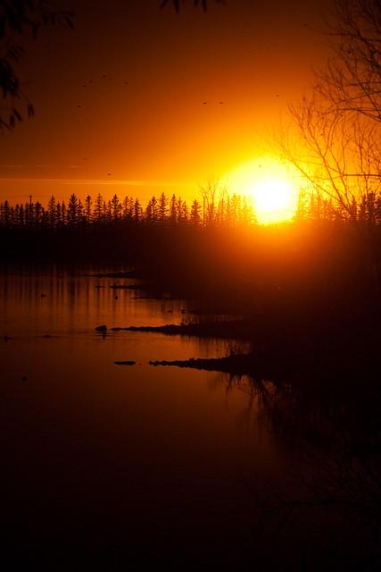 IMAGE: http://farm2.static.flickr.com/1383/5103549495_d11fd9dbfe_z.jpg