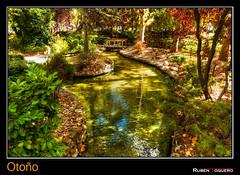 Otoo (ruhey) Tags: fall canon otoo autumm palencia jardinillos xti 450d canonefs1585mmf3556isusm rubntoquero