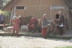 Opinn Skjold an der Herberge in Haithabu Wikinger Museum WHH 25-09-2010