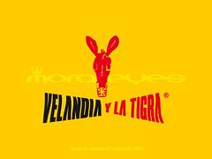 2008-02 VELANDIA® 2 (morareyes®) Tags: velandia velandiaylatigra