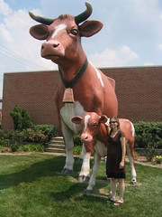 Giant Cow & Calf