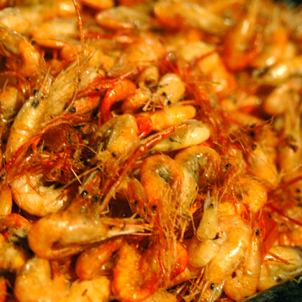 Yangshuo Li River Shrimp